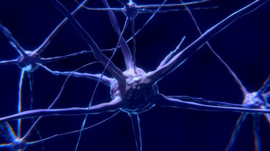CBD for Neurological Disorders – Reviews & How CBD Can Help