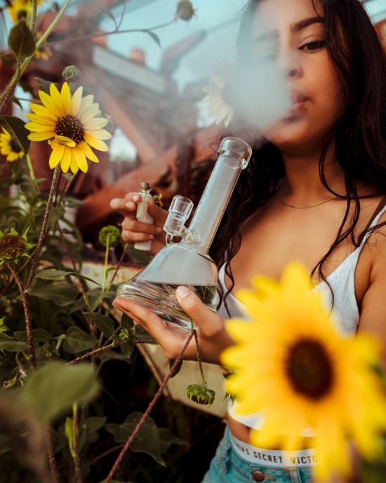 The Science Of The Bong Explained: How Does a Bong Work?